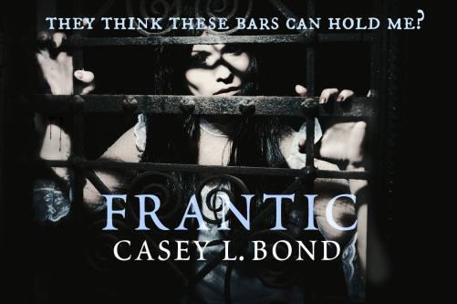Frantic Teaser